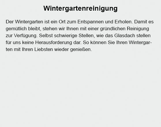 Wintergartenreinigung